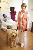 Krankenhausbesuch, Pflegeheim, Hilfe in der Pflege